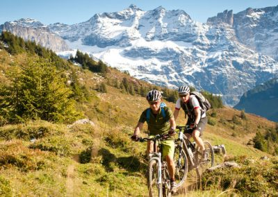 mountain bike_650x365_origimage_665971
