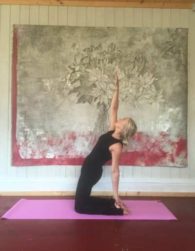 hamilton lodge yoga & pilates
